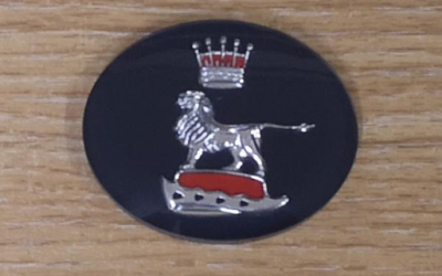 Grill centre badge insert